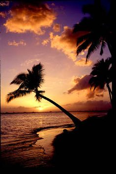 Randy Miller Images in Lahaina Hawaii. Sunsets and scenic photography. Lahaina Hawaii, Aloha Hawaii, Oahu, Great Places, Beautiful Places, West Maui, Scenic Photography, Going On Holiday, Island Life