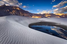 himalayan sands / nubra, ladakh, india