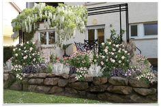 """Gemeinsam mit dem Magazin """"Lust auf Natur"""" haben wir dieses Beet entwickelt: Terrassenflächen schön zu umpflanzen ist manchmal gar nicht so… Clematis, Rosen Beet, Indian Summer, Motif Design, Outdoor Seating, Zeppelin, Summer Of Love, Beets, Garden Plants"""