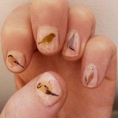 mixed bird nail transfers by katebroughton on Etsy,