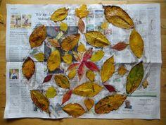 KINDERSCHERE STOFF PAPIER: Herbstmandala Homemade Crafts, Fall Diy, Diy For Kids, Autumn, Tableware, Painting, Art, Paper, Art Background