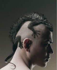Google Image Result for http://www.craigboyce.com/w/wp-content/uploads/2012/07/best-mohawk-ever.jpg