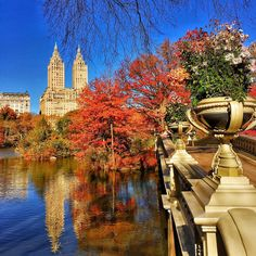 Around the world with me - Manhattan - New York - USA * *************** FALLtastic Colors at the Bow Bridge in Central Park - New York is fabulous any season, anytime, anyway  My sincere thanks to these awesome feeds for featuring my shots... I'm so happy, honored and flattered. You are the best!!!! * *************** My sincere thanks to these awesome @wonderful_places  for featuring my shot... I'm so happy, honored and flattered. You are the best!!!! *