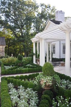 A Classic Country White Garden traditional landscape