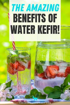 Water kefir is a deliciour way to get your kids to drink their probiotics! Delicious, easy to make, and full of wonderful health benefits! #HealthyRecipes #Fermented #HealthyLiving #Probiotics Keto Snacks, Healthy Snacks, Healthy Recipes, Water Kefir, Diet Water, Healthy Life, Healthy Living, Kefir Recipes, Probiotic Drinks