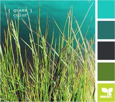 Grass Color | Design Seeds