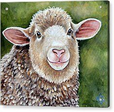 Lottie A Spring Lamb Painting Acrylic Print by Laura Carey