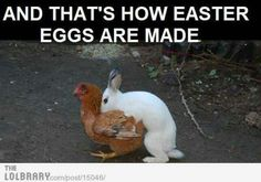 Finally someone expains Easter: the rabbit & egg. Now I gotta digger [sic] the rest of the story.