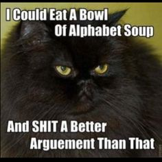 "This is so me...however, I would like to point out that the correct spelling is ""argument"""