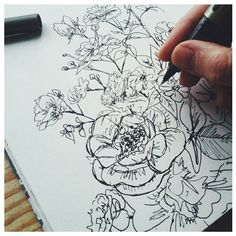 Bit behind with #inktober but here's some sketchy roses. Missing summer already! #sketchbook, #inktober2015, #drawing, #linework, #roses, #blackpen, #flowers, #sketching, #uniball.