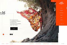 http://www.webdesignserved.com/gallery/Web-Hermes-Concept/28558529