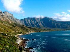 betty's bay south africa - Google Search