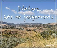 Nature Has No Judgements