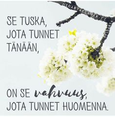 """""""Aito kasvu on herkkää"""" – 5 voimakuvaa henkisestä kasvusta Cigarette Quotes, Motivational Quotes, Inspirational Quotes, Something To Remember, Quotes About New Year, Truth Of Life, Life Words, Good Thoughts, Funny Texts"""