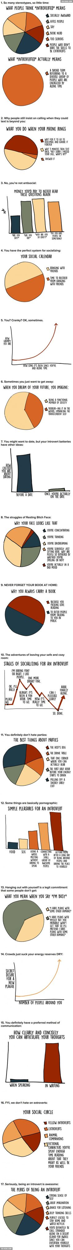 17 graphs explaining what being introvert really means... Thank you for this..