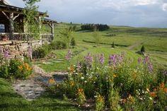Montana summer skies
