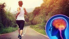Cuando dejamos de hacer ejercicio nuestro cerebro cambia - Mejor con Salud  ||  La vida sedentaria se ha convertido en un hábito. Pero, cuando dejamos de hacer ejercicio esto repercute seriamente en nuestro cerebro. https://mejorconsalud.com/cuando-dejamos-ejercicio-cerebro-cambia/?utm_campaign=crowdfire&utm_content=crowdfire&utm_medium=social&utm_source=pinterest