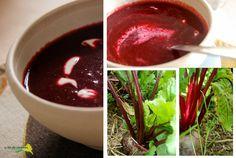 La flor del calabacín: De la huerta a la mesa: sopa de remolacha asada