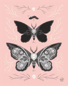 Death's Head Hawk Moths by MadeByPerrin #illustration #moth