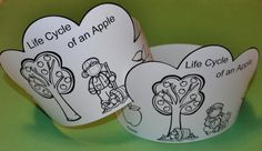 I have added a Life Cycle of an Apple Crown to 1 - 2 - 3 Learn Curiculum.