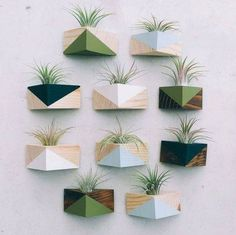 Triangle Magnet w/Air Plant – Decor Style 2019 House Plants Decor, Plant Decor, Air Plants, Indoor Plants, Indoor Gardening, Wooden Shelf Design, Decoration Plante, Deco Floral, Plant Wall
