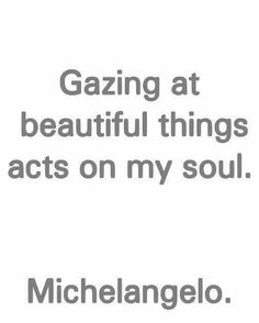 Gazing at beautiful things acts on my soul - Michelangelo