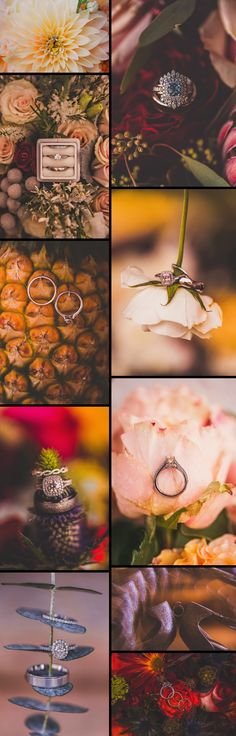 Wedding Rings | Virginia Wedding Photographer