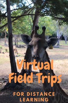 Make the best of distance learning by taking your students on a virtual field trip 18 great ideas Virtual Travel, Virtual Field Trips, Science Activities, Team Activities, Educational Activities, Home Learning, Home Schooling, Barn, Distance
