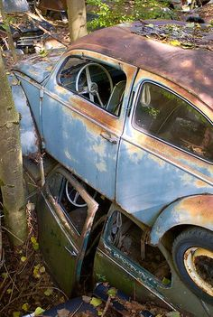 Wrecked VW's