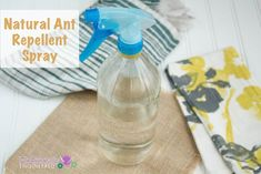 Natural Ant Repellent_spray.001
