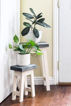 30+ Best DIY Plant Stand Ideas & Tutorials For 2020 - Crazy Laura Small Plant Stand, Wooden Plant Stands, Diy Plant Stand, Unique Plants, Small Plants, Cool Plants, Hanging Plants, Plants Indoor, Indoor Gardening