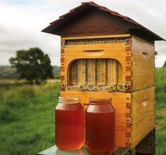 http://www.honeyflow.com/ We are so happy to say that now you can harvest the honey with virtually no disturbance to the bees. It's a dream come true for us and we are actually quite surprised ourselves at just how well our Flow™ Frames work.