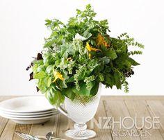 Herbal Tonic Garden News, Wine Recipes, Herbalism, Home And Garden, Herbs, Seasons, Flowers, Plants, Summer
