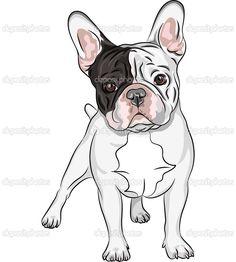 francia bulldog rajz - Yahoo Search Results