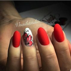 Only Nail shape