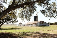 Love central Texas countryside, especially huge, old, live oak trees, elm trees, pecan trees and windmills!The Farmhouse - Magnolia Homes