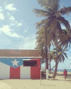 Pasteles Puerto Rico Recipe, Puerto Rican Coquito Recipe, San Juan Festival, Puerto Rican Parade, Miss Puerto Rico, Puerto Ricans, Small Island, Rio Grande, Tourism