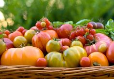 Easy Fruits and Vegetables to Grow at Home