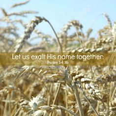 Come, let us tell of the LORD's greatness; let us exalt His name together. Psalm 34:3