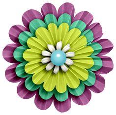 ●••°‿✿⁀Flowers‿✿⁀°••●