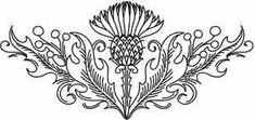 scottish thistle drawing | Thistle