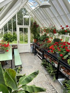 Greenhouse Interior  Layout Inspiration - inside our greenhouse, benching and seating for growing and relaxing