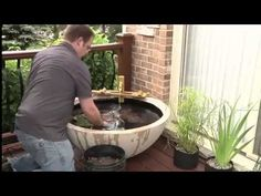 How To Build A Patio Pond Indoors or Outdoors or on your Balcony