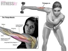cool Punch-outs for Shapely Arms | FitnessRX for Women