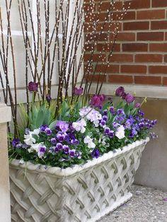 Spring! urbanscapesdetroit - Fine Garden Management