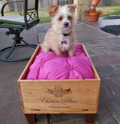 Wine Crate Cat Bed Wine Crate Dog Bed Pet by SammysBackyardCraft, $85.00