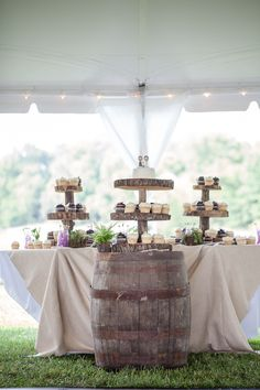Rustic Springtime. Small wedding cake with cupcakes
