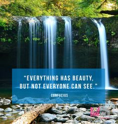 Everything has beauty, but not everyone can see. —Confucius