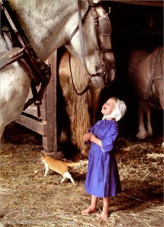 Little Amish girl with horse ~makes me smile