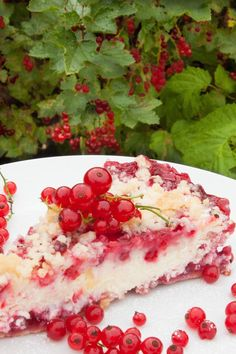 Red Currant Cheese Cake - Delicious, light and pretty